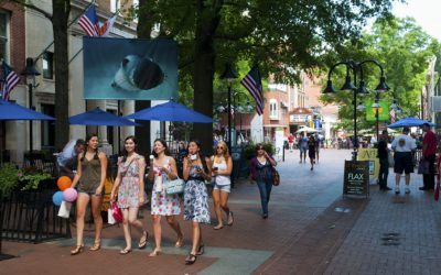 Charlottesville Attractions: A Personal Reflection